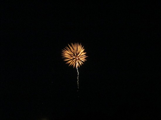 Fireworks Credit: Katie Shepard